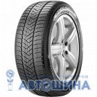 Шина Pirelli Scorpion Winter 255/55 R19